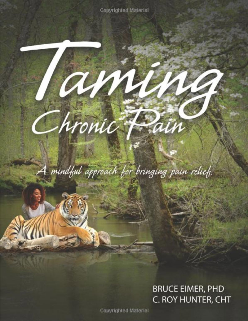 Book Cover: Taming Chronic Pain by Bruce Eimer, PhD
